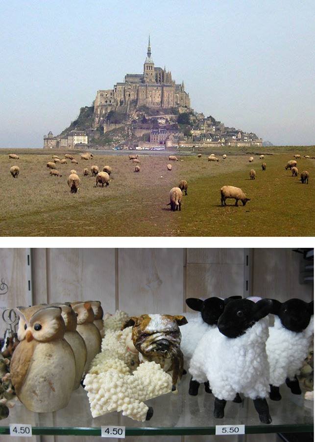 mont-st-michel-sheep-to-blog