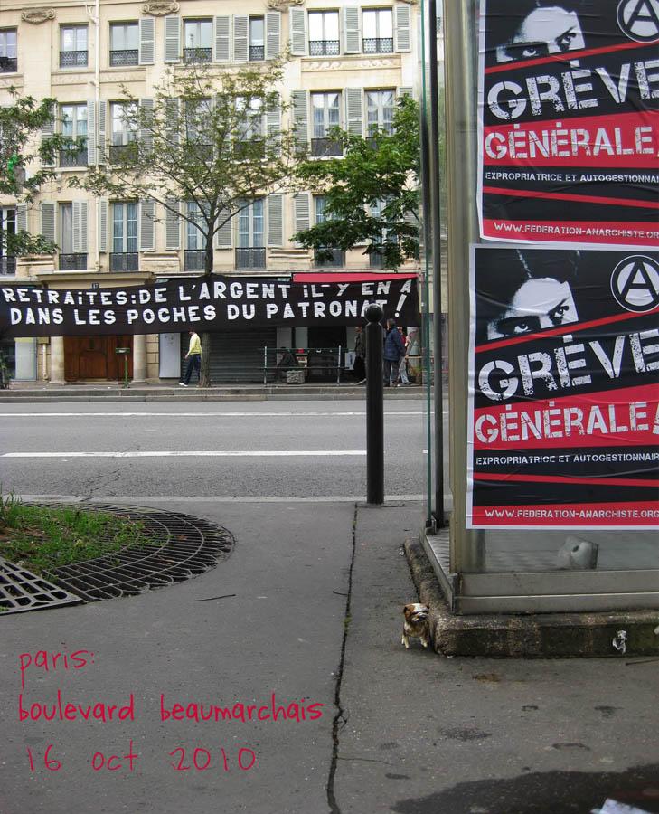 paperpets paris avant la manifestation 16-10-2010