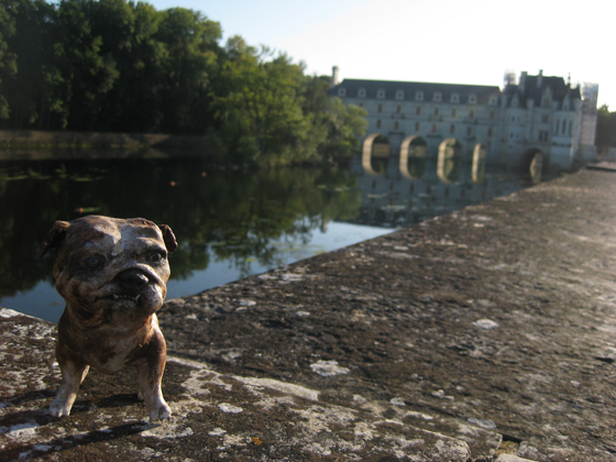 blog paperpetsChateauChenonceau(21)