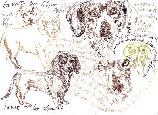 inks chiens3