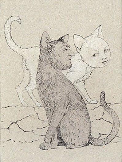 cats gris (lo res)