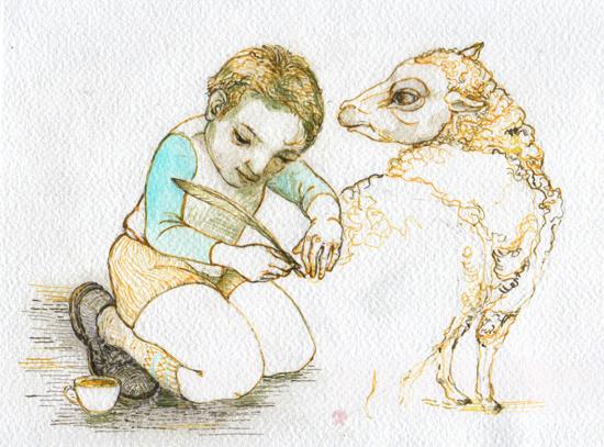 inks drawing sheep