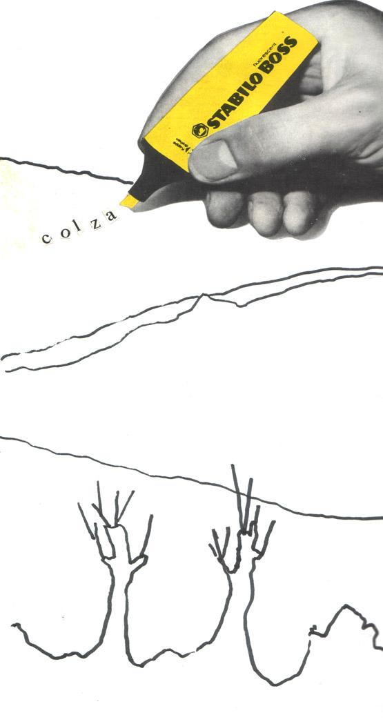 carnet putney colza1