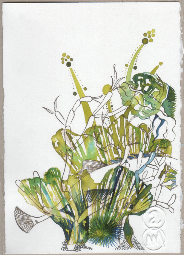 BLOG A5 bannalec2017 seaweeds